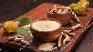 ashwagandha is a prominent ayurveda medicine for infertility